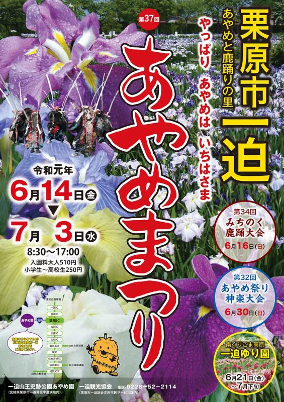 2019あやめ祭りポスターの画像