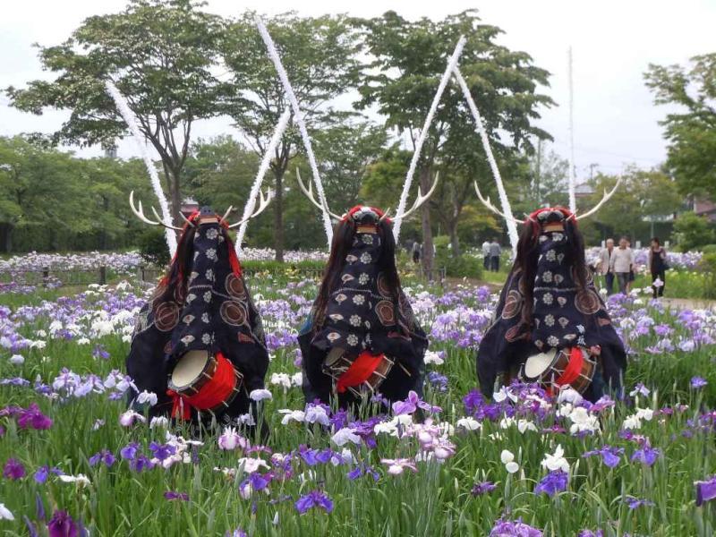 みちのく鹿踊大会の画像